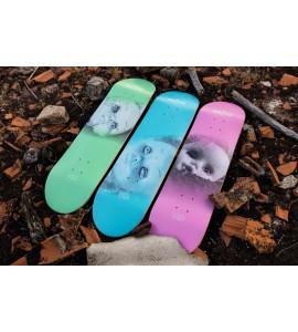 skate deck BD  Dolls blue